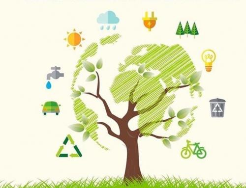 Pasos para ayudar al medio ambiente al crear eventos